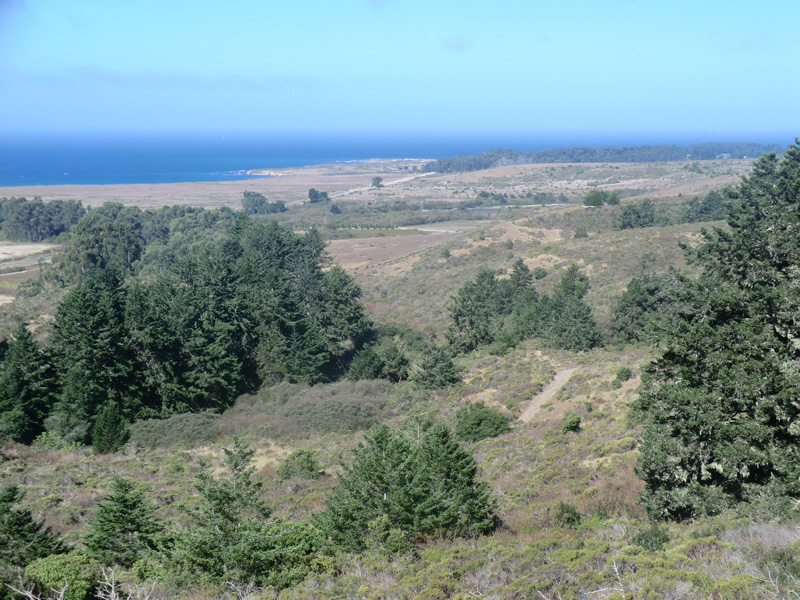 Marine terraces near Franklin Point