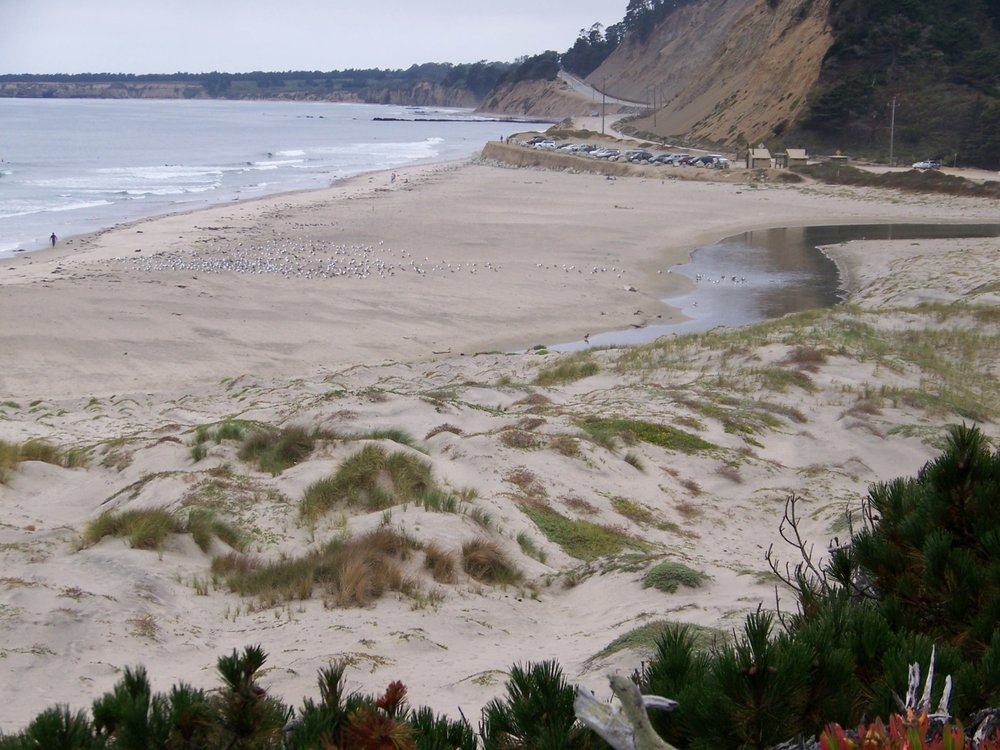 Coastal Strand Community Rancho de Oso, looking north at seasonal sandbar at Waddell Creek