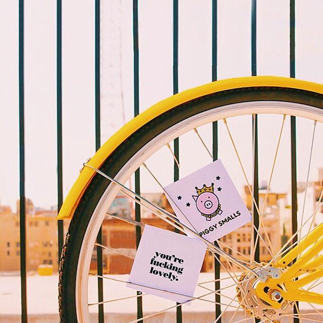 bikecards.jpg