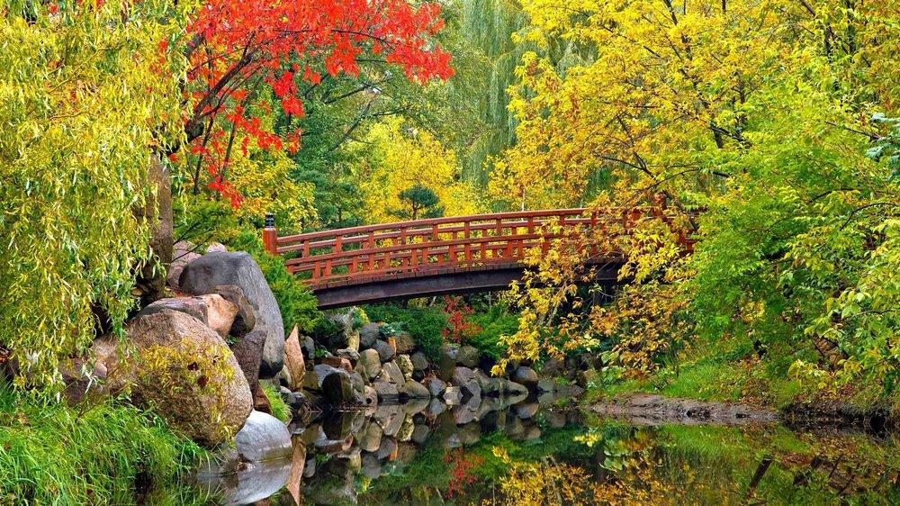 Anderson Gardens 2.jpg