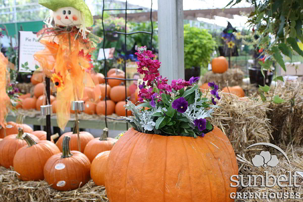 2012-fall-mood-igc-atl (21)-blog.jpg
