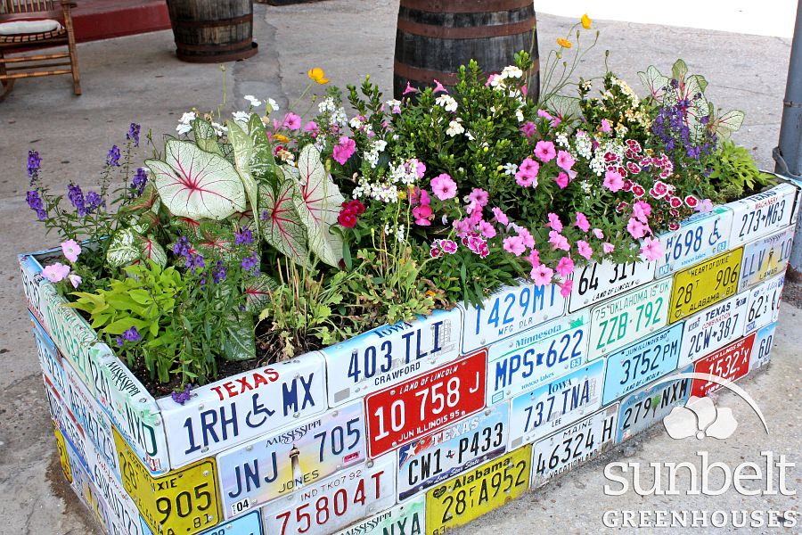 license-plate-planter.jpg