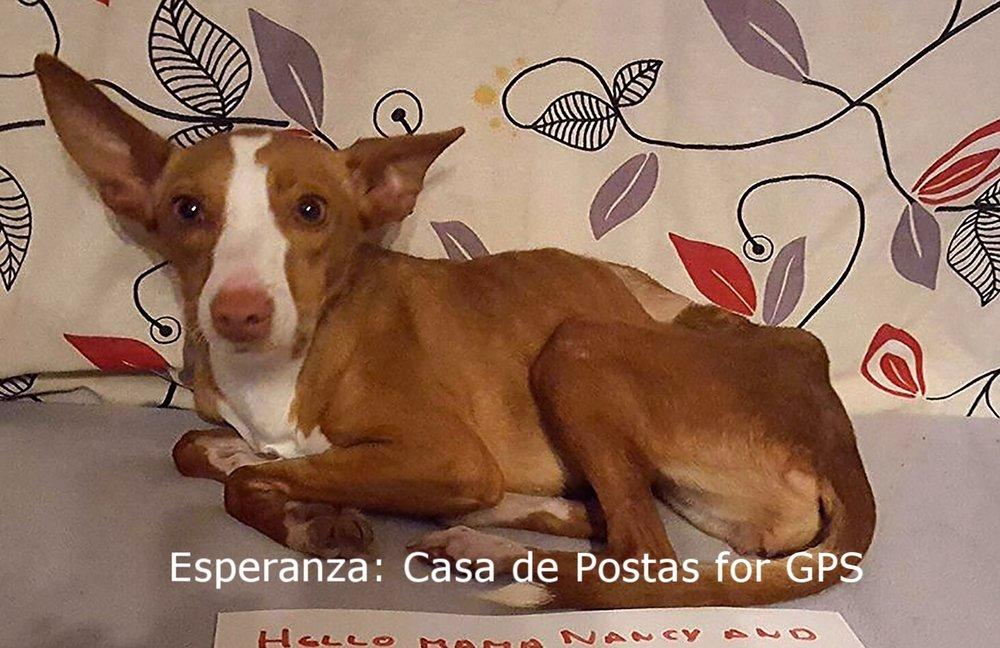 Esperanza2.jpg