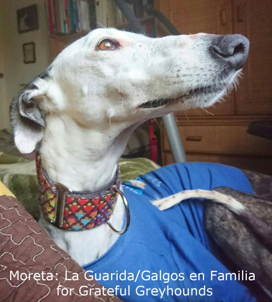 Moreta2.jpg