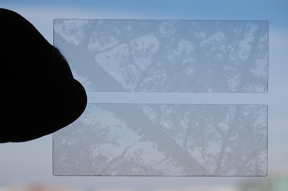 Leaf_Slide_1.jpg