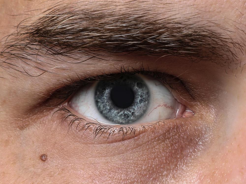 Davids-Eye.png