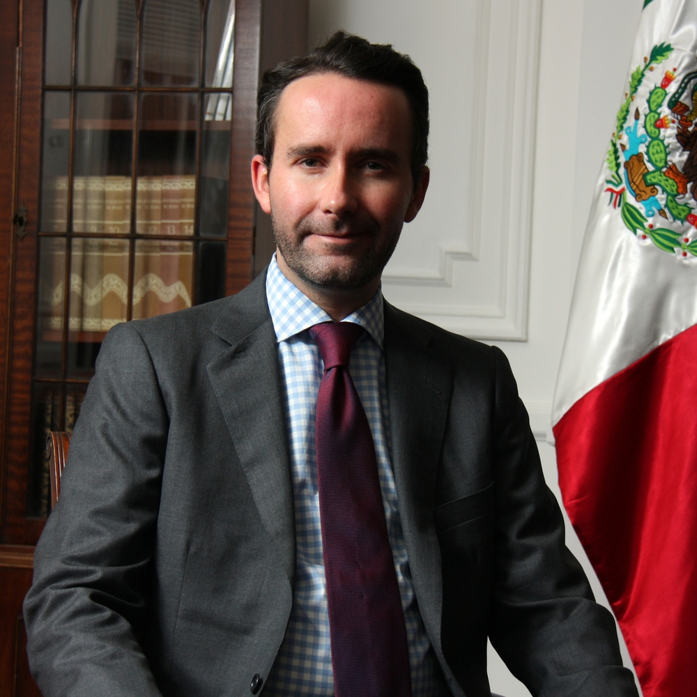 HE Diego Gomez Pickering (Mexico)