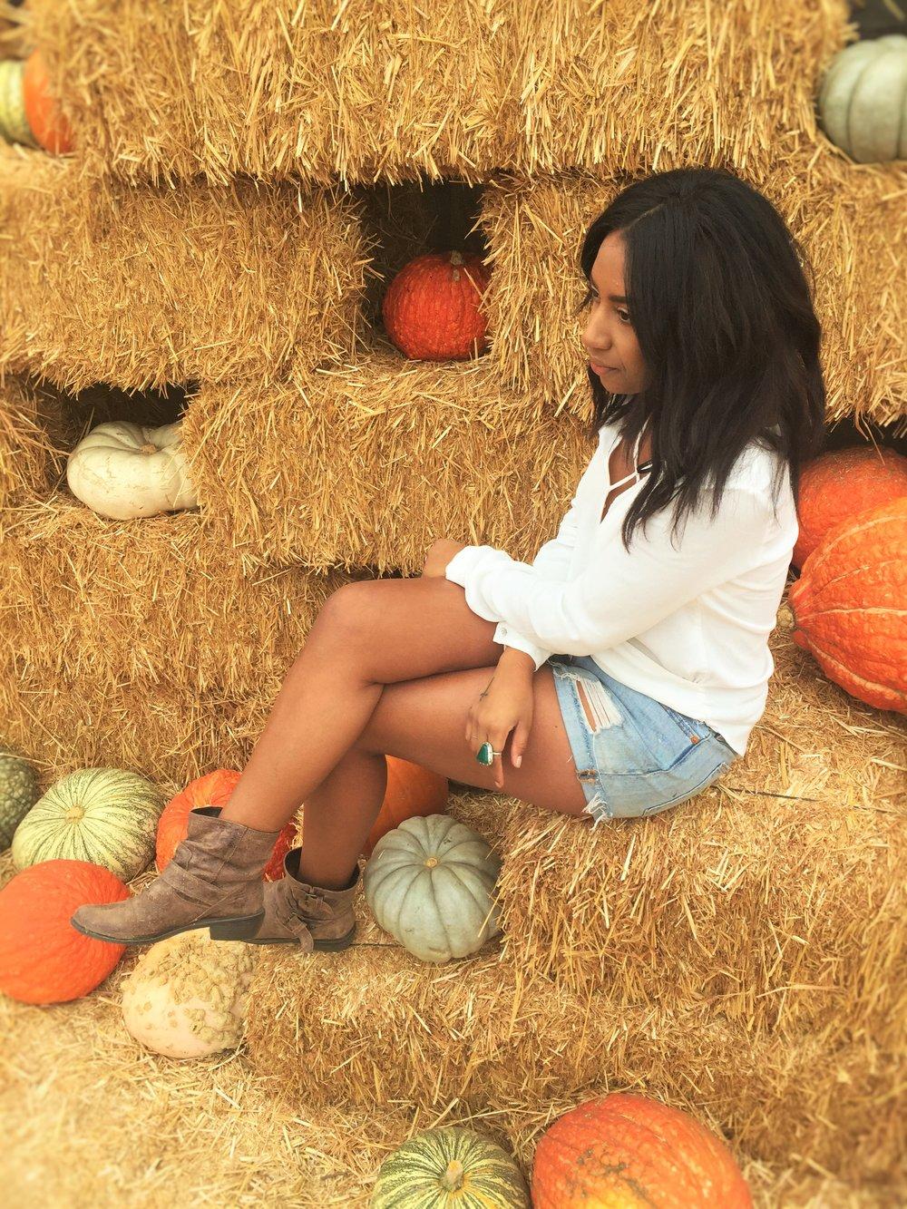 Pumpkin 4578.JPG