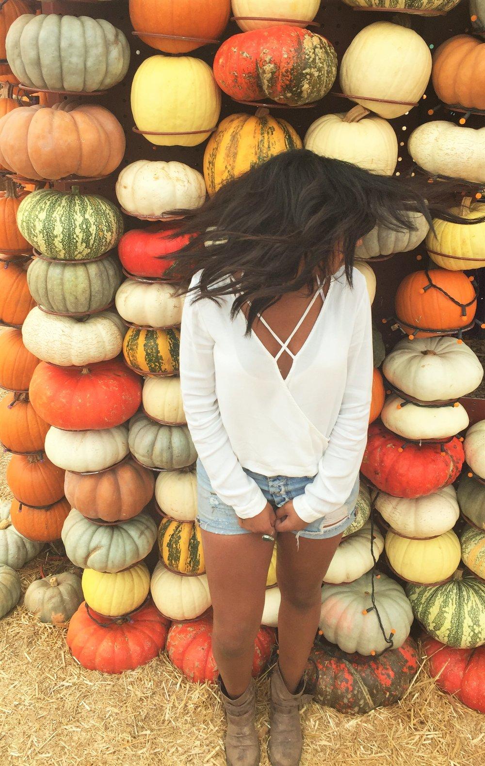 Pumpkin 4638.JPG