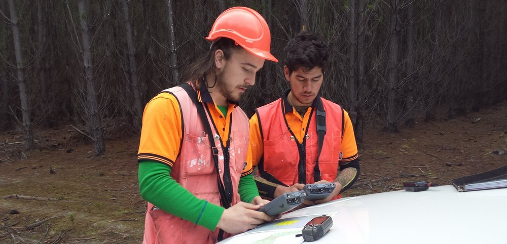 Pinetech-Pacific-forestry-data-collection-services