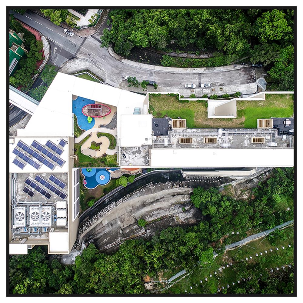 HONG KONG INTERNATIONAL SCHOOLLOWER PRIMARY SCHOOL  -
