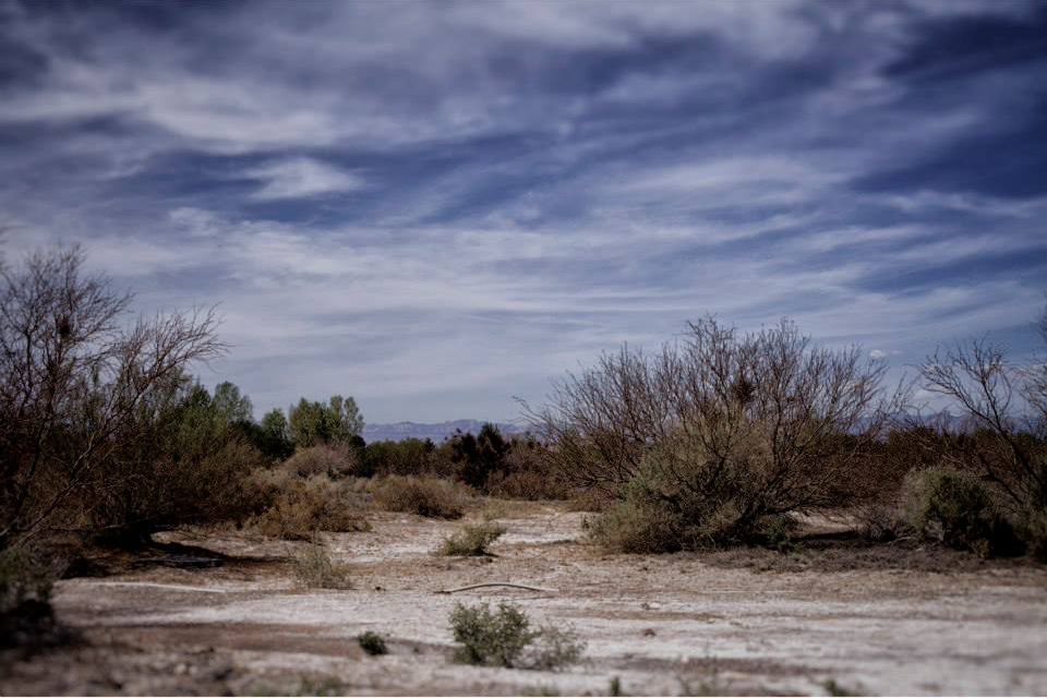 Wetlands, Las Vegas, NV