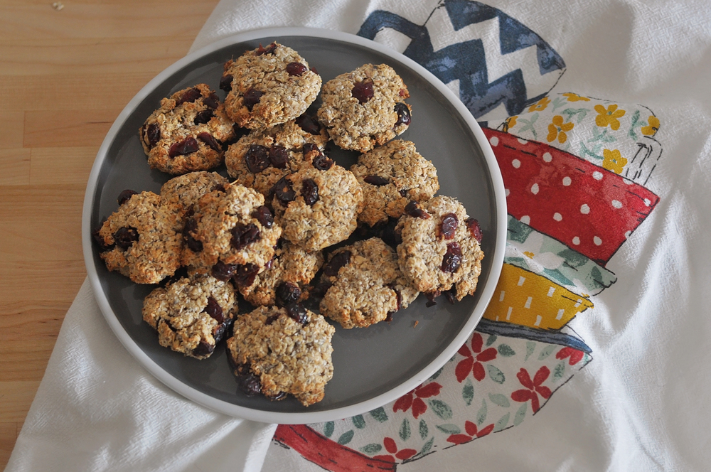 oatmeal cookies- sugar, dairy, and gluten free