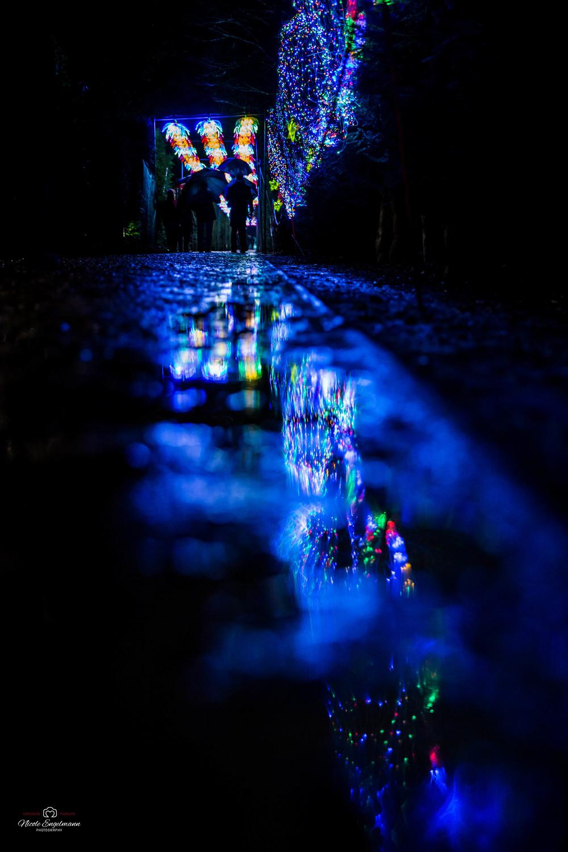 lantern-festival-4.jpg
