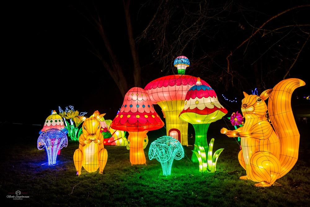 lantern-festival-12.jpg