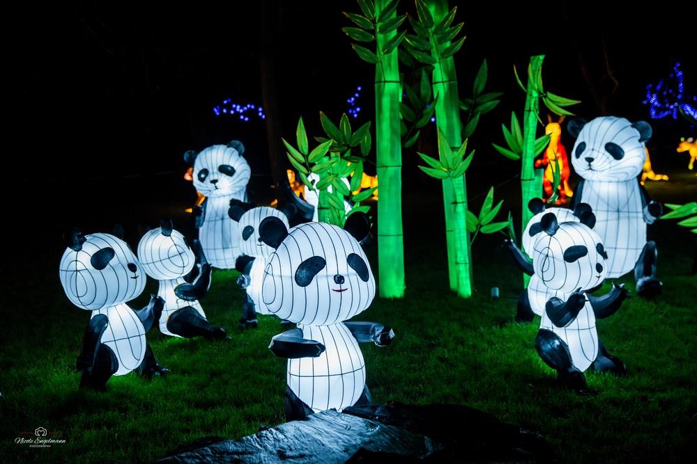 lantern-festival-14.jpg