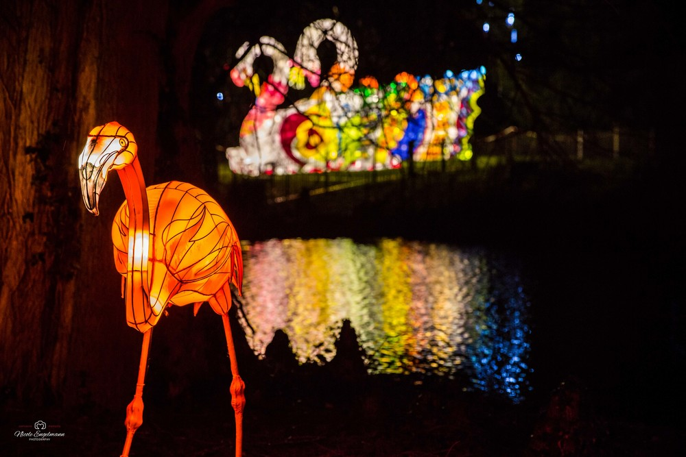 lantern-festival-22.jpg
