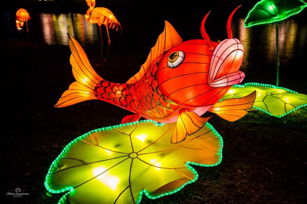 lantern-festival-25.jpg