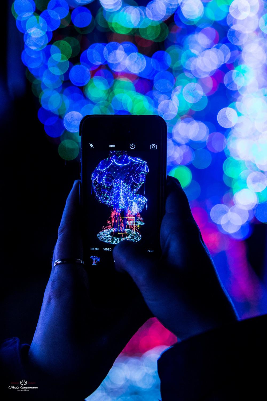 lantern-festival-37.jpg