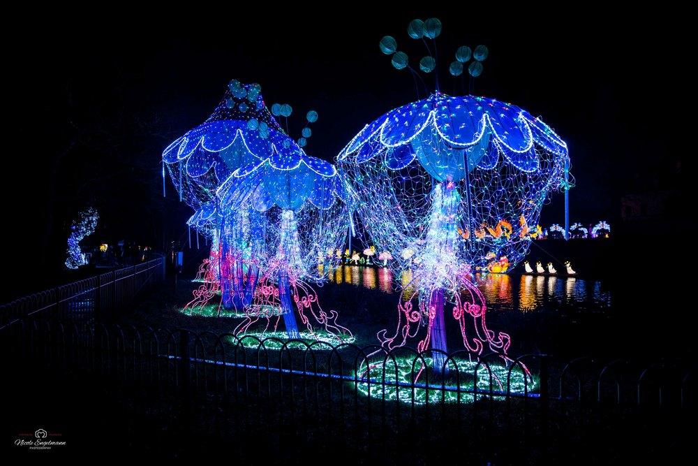 lantern-festival-41.jpg