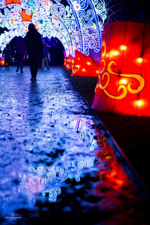 lantern-festival-61.jpg