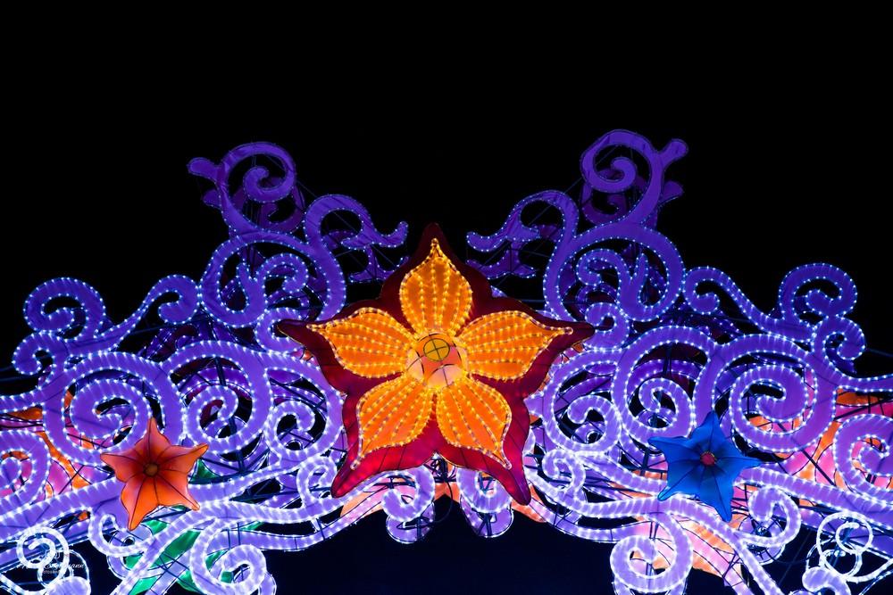 lantern-festival-62.jpg
