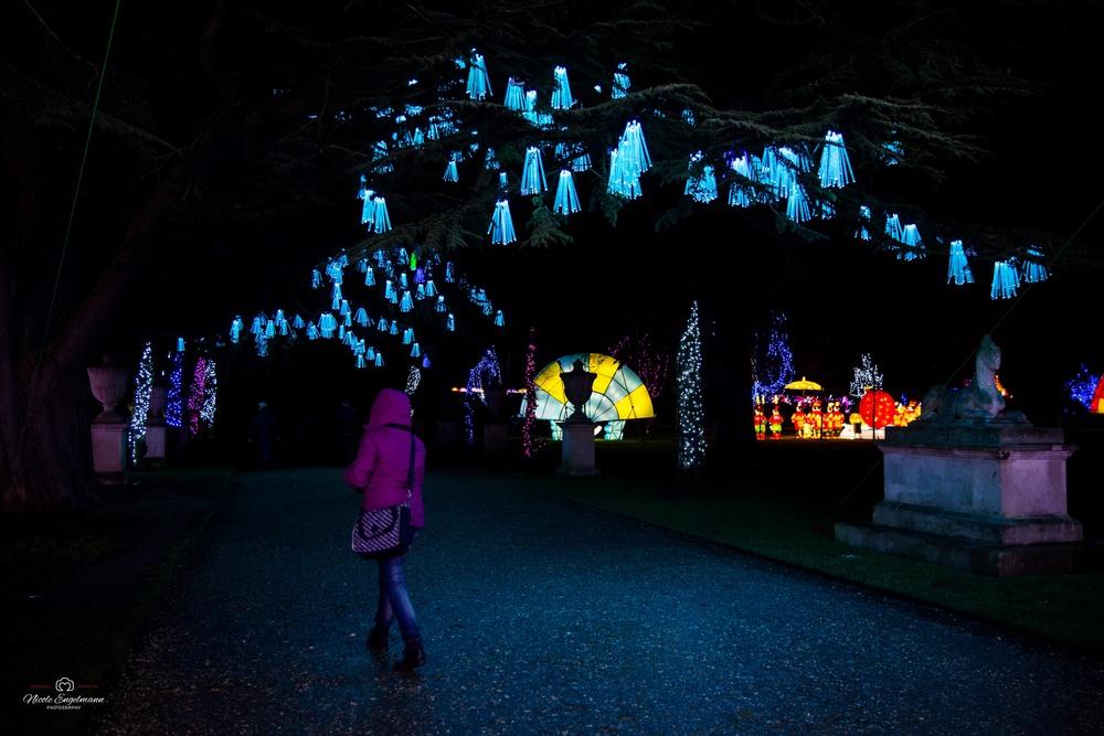 lantern-festival-64.jpg
