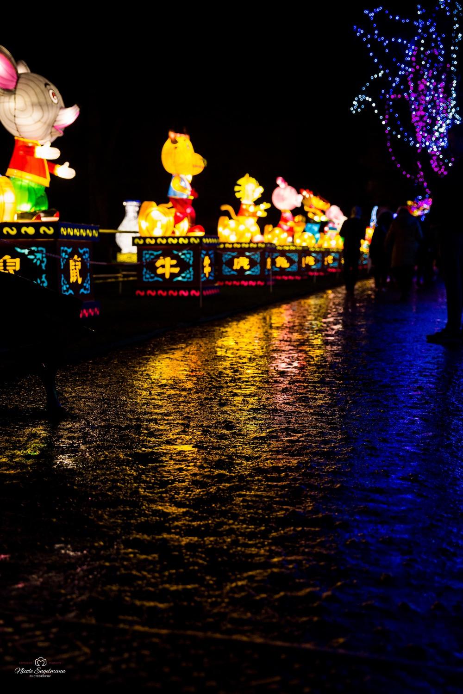 lantern-festival-77.jpg