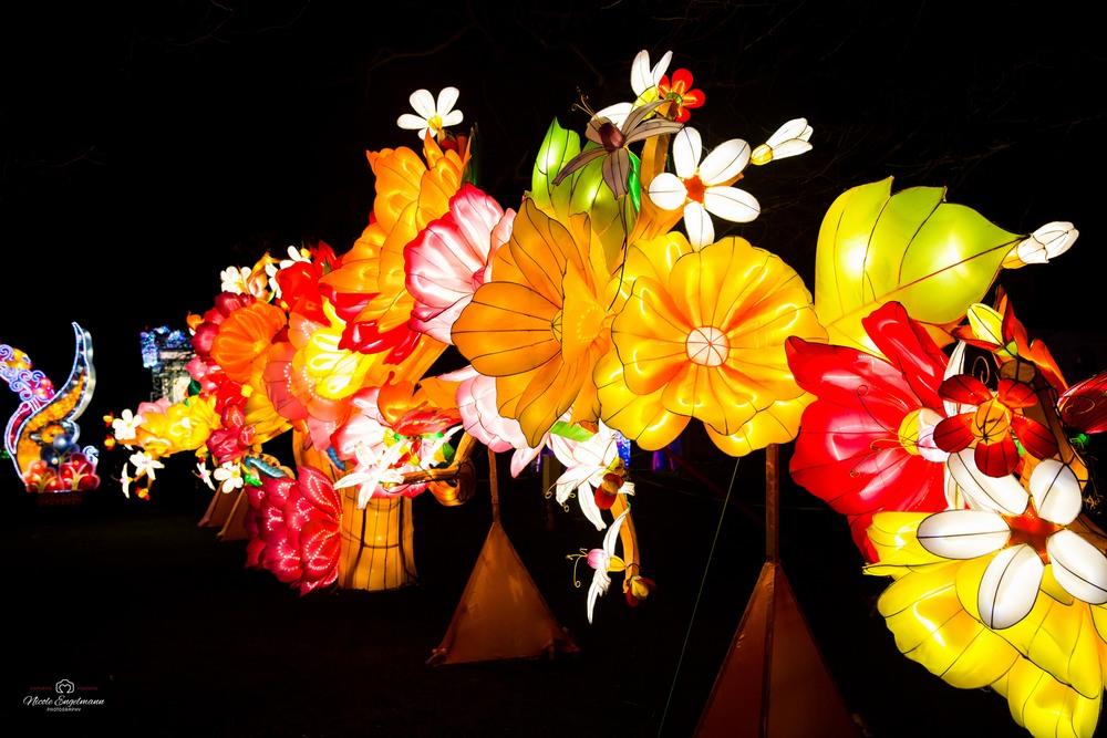 lantern-festival-80.jpg