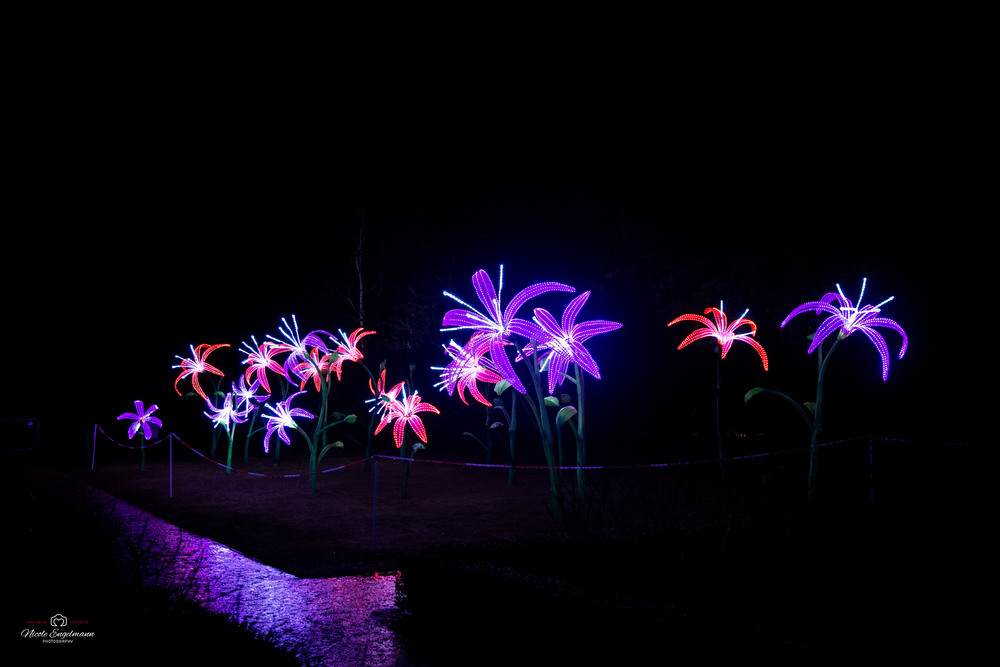 lantern-festival-82.jpg