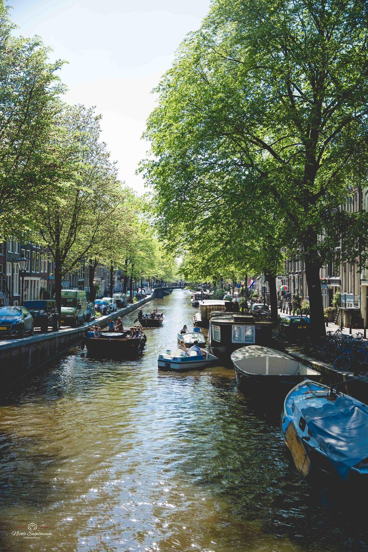Amasterdam-16.jpg