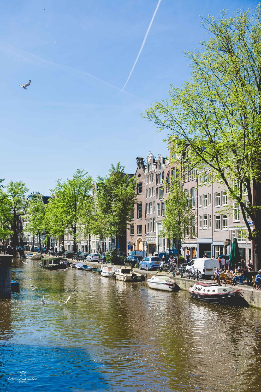 Amasterdam-55.jpg