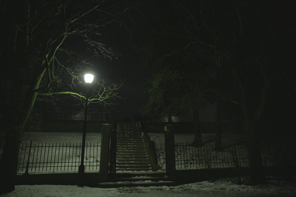 Oslo Botanical Garden