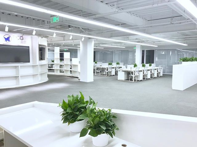 Our simple clean new DCG office in Beijing!