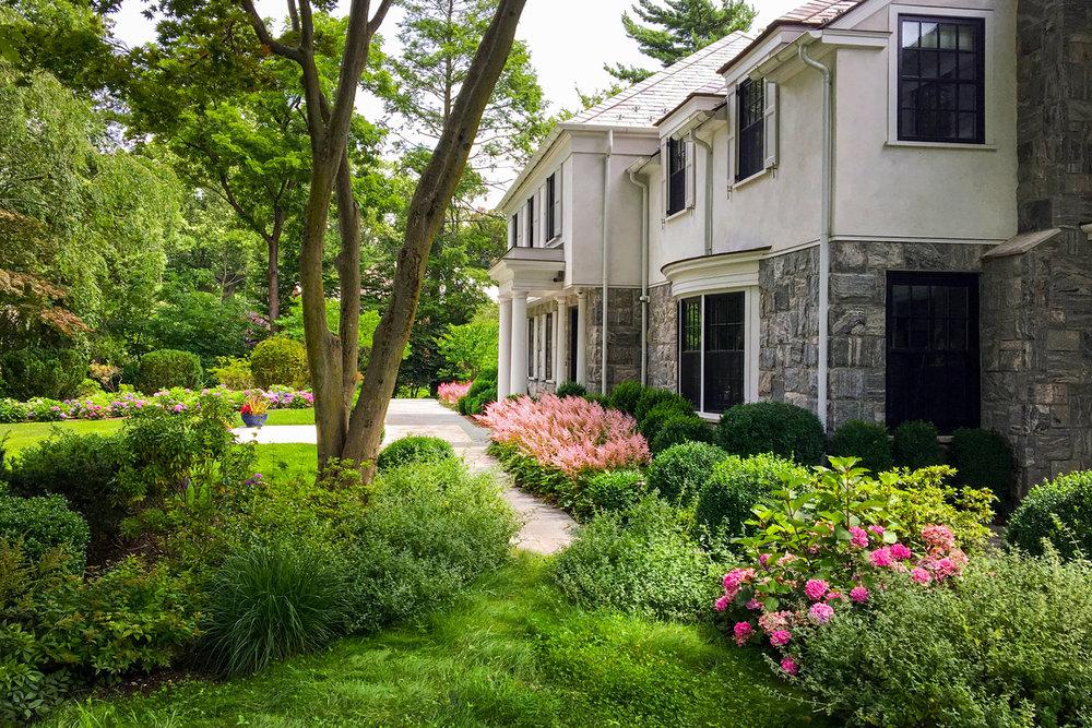 Flower-Hill_Landscape-design_Hydrangea_boxwood_Garden_Long-island_NY.jpg