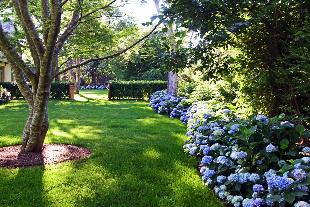water-mill_water-front_landscape-design_hamptons_garden_hydrangea.jpg