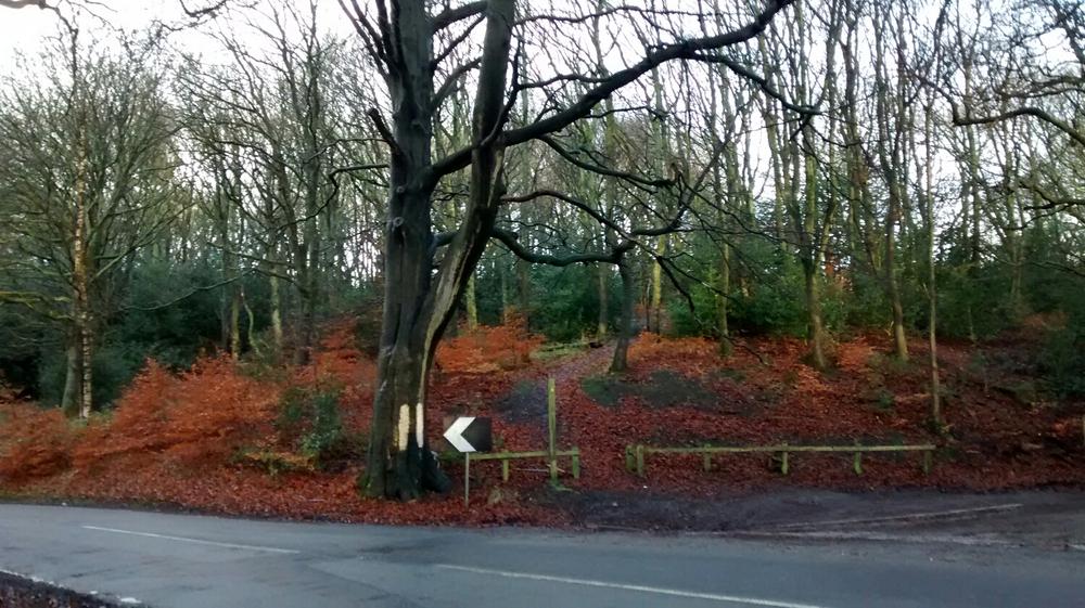 Winter colour near Rivington, Lancashire