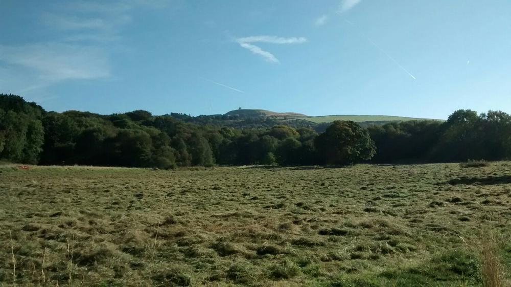 Lever Park, Looking Towards Rivington.