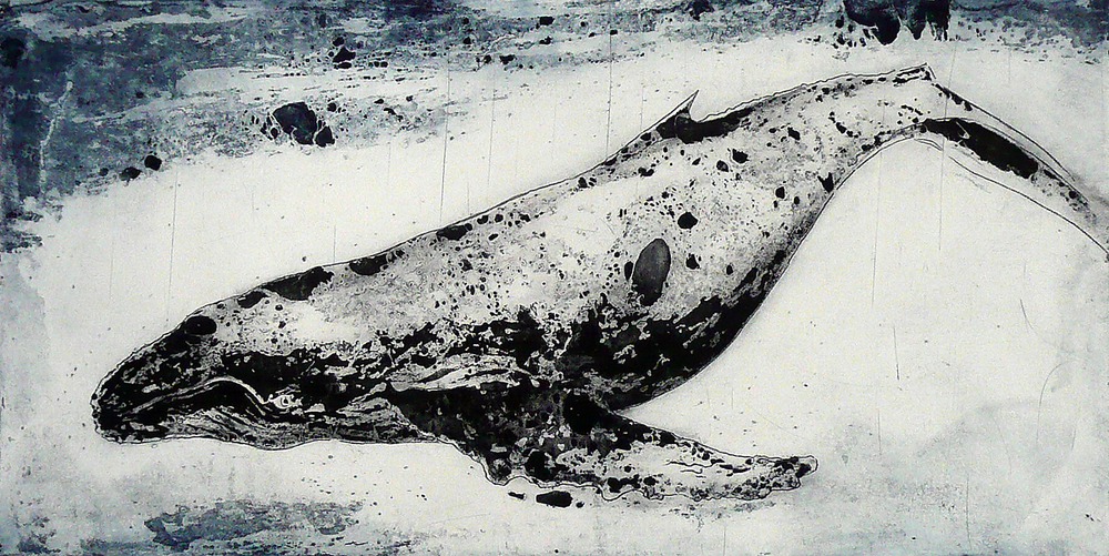 Humpback Whale I