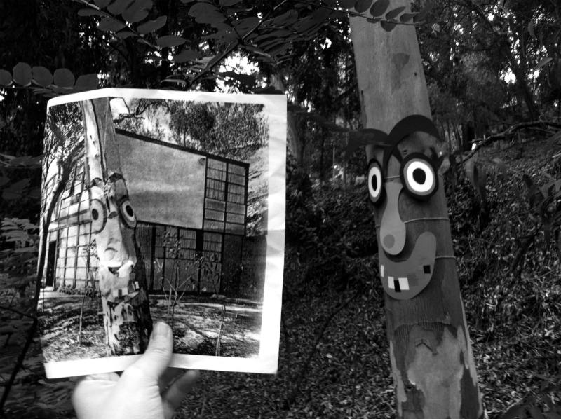 TreeFaceBW_1-w800-h800.jpg