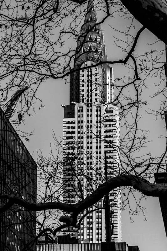 1712 NYC BNW-5.jpg