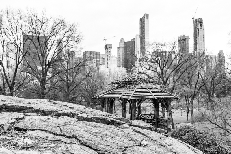 1712 NYC BNW-15.jpg