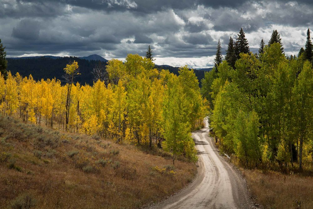 Pacific Creek Road in Autumn