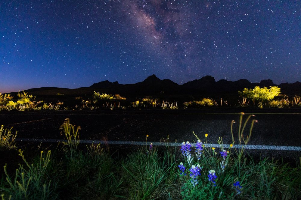 BIG BEND - STARS + WILDFLOWERS