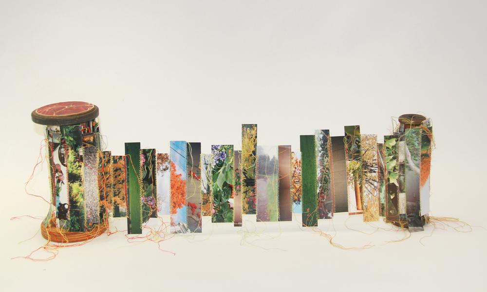 Tree Scroll.jpg