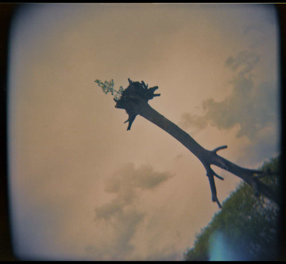 Holga Paris010_2.jpg