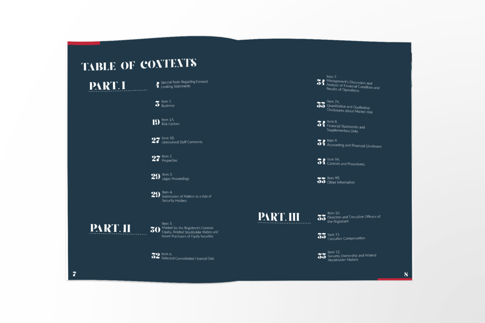 Smith & Wollensky - Annual Report_Mockup04.png