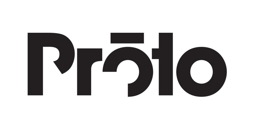 shane_bzdok_proto_logo