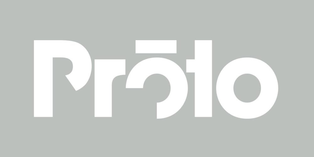 shane_bzdok_proto_logo_reversed