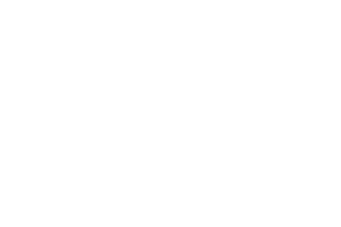 The Palm Event